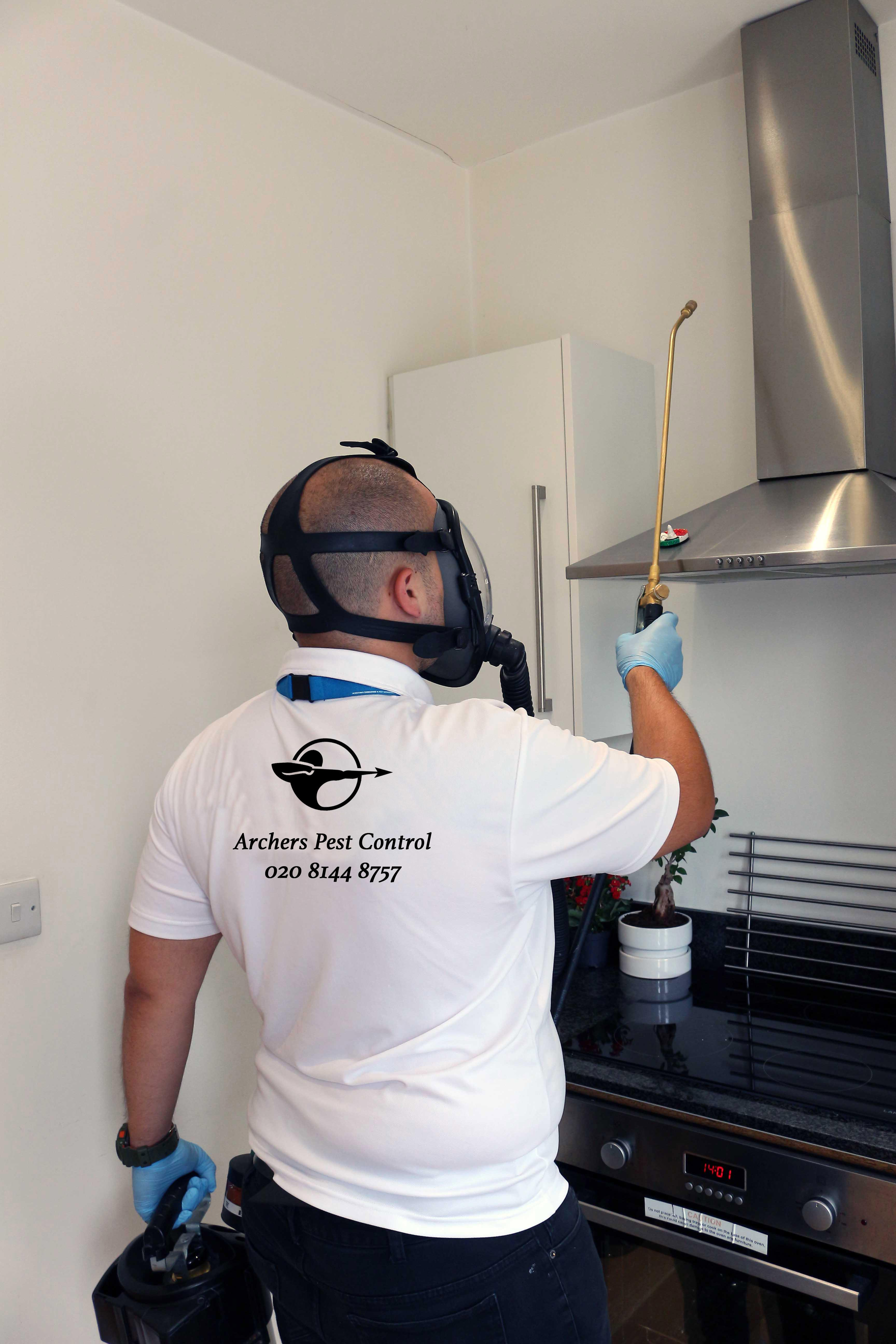 pest removal in Enfield